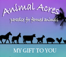 Last Week for Animal Acres