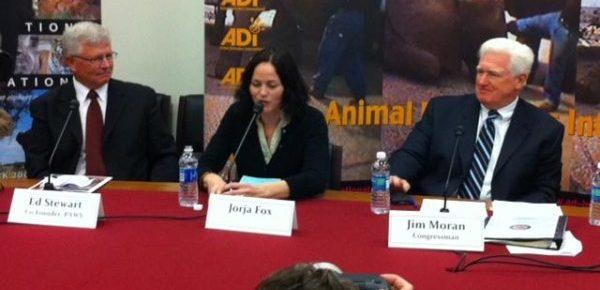 Jorja Speaking in DC