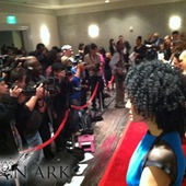 Wide shot of the red carpet & paparazzi at the Nominee's Luncheon